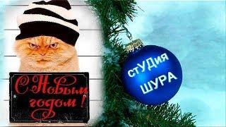 Александр Немецъ - С Новым Годом !!! (Студия Шура) клипы шансон