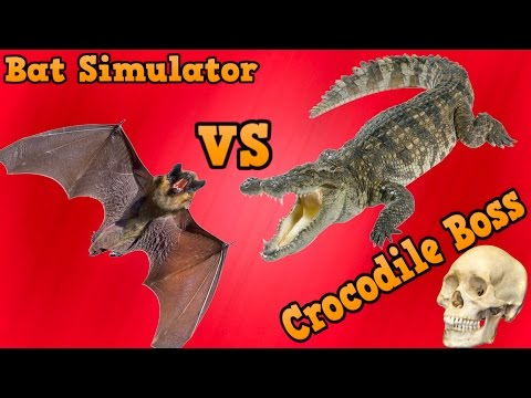 🦇Bat Simulator VS Crocodile Boss - Ultimate Forest Simulator - By Gluten Free Games - iOS/Android