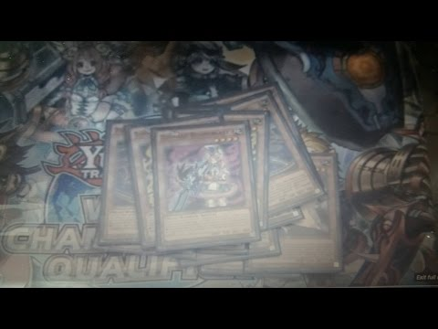 Yugioh 4/15/2017 Fort Worth, TX Regionals 1st Place Deck Profile - Paleozoic Zoodiac - Shelby Redmon