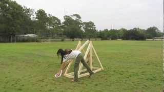 Catapults And Trebuchets For Physics