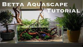 Nano Aquarium Tutorial Mini Pond Aquascape