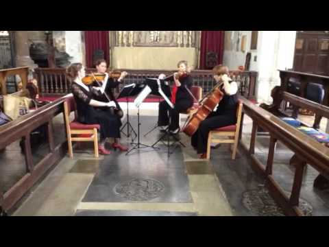 Wedding Entrance Music...www.salisburystringquartet.com