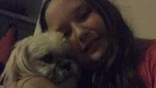 Upstairs with my dog