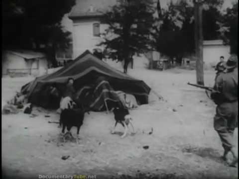 GLOBAL COLD WAR  French Algerian Civil Six Year War HD
