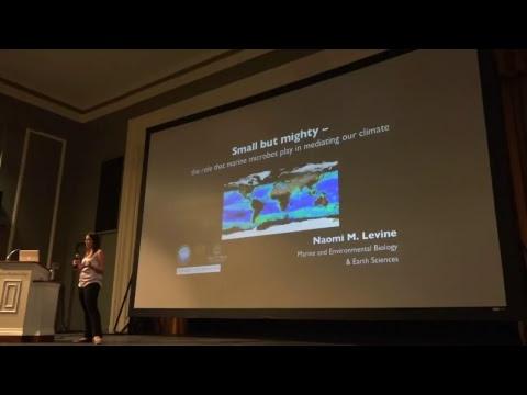 Public Presentation by Dr. Naomi M. Levine