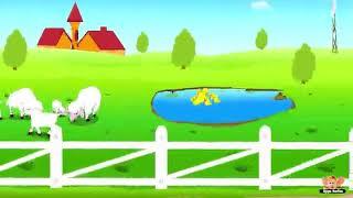 Nursery rhymes for kids(3)