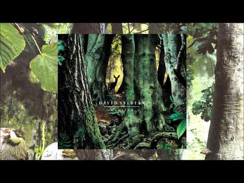 David Sylvian / Manafon (Full Album)