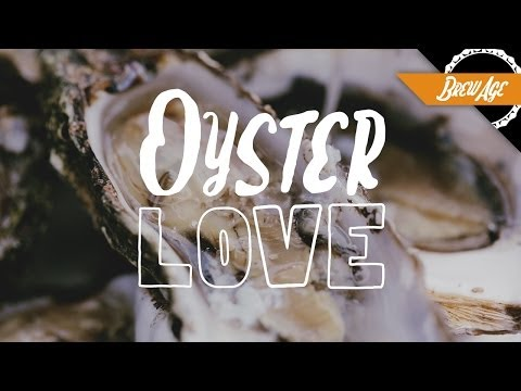 Oyster Love: The Marriage of Oysters and Beer