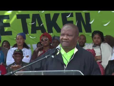 Malema, Maimane, Holomisa, Lekota address Marikana miners