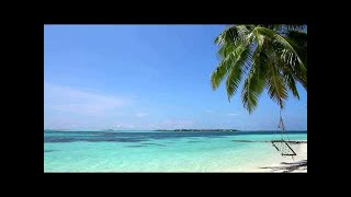 Relaxing Sounds of Waves - 2 Hours - Tropical Beach Relaxation