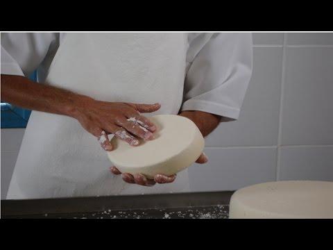 Produção de Queijos Finos e Mofados - Salga do Queijo Saint Paulin