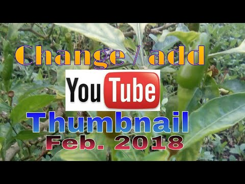 How to Change / add thumbnail on youtube vedio Feb. 21, 2018