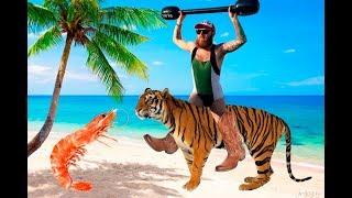 Тигровая закуска к пиву