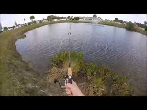 Florida Gar Fishing