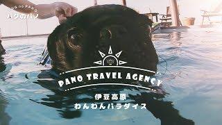お試し新シリーズ 「Pano Travel Agency」 通称PTA (笑 パノ君が実際に...