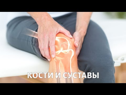 Кости и суставы | Без химии | Телеканал «Доктор»