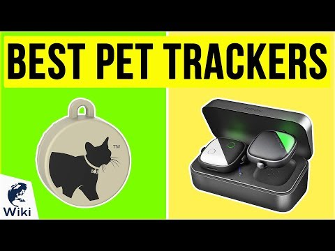 10 Best Pet Trackers 2020