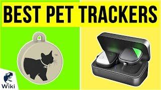 10 Best Pet Trackers 2020