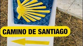 DAY 20 | Camino de Santiago