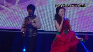 陳琳, 跨界時尚,琳漓盡致,演唱會, 20150829, #9