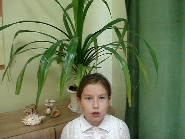 Изображение предпросмотра прочтения – ТатьянаЧаадаева читает произведение «Подарки лета» (Трутнева Евгения)