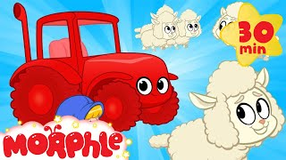 My Red Tractor - Fluffy Sheep | Mila and Morphle  on the Farm | Cartoons for Kids | Morphle TV