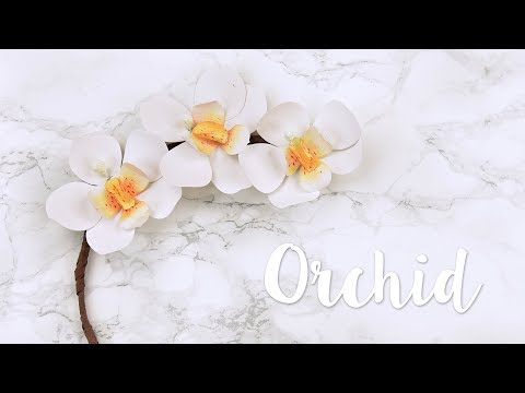 How to create your own paper Orchid! - Sizzix Lifestyle