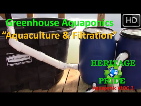 "Urban Aquaponics - ""Aquaculture"" VLOG 2 by HPFirearms"