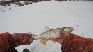 рыбалка в марте 2021 в непогоду на реке ловля плотвы голавля