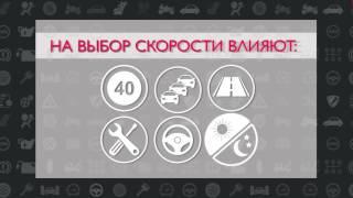 Дорожная безопасность  Выпуск 17