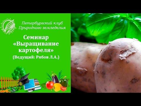Хранение картофеля -