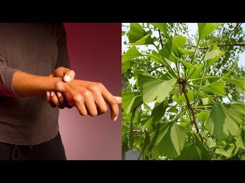 essa-planta-pode-acabar-com-dor-nos-ossos-da-mão-rápido