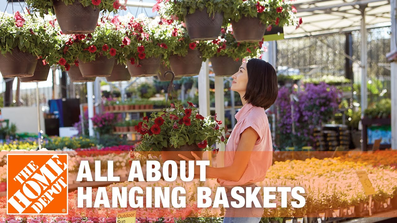 all about hanging baskets the home depot youtube