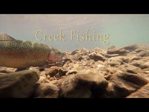 Creek Fishing In Missouri