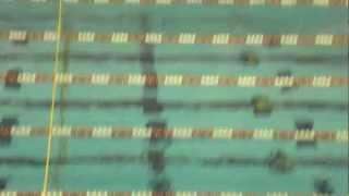 Swimmers At Olympic Training Camp For London 2012 Train In Knoxville