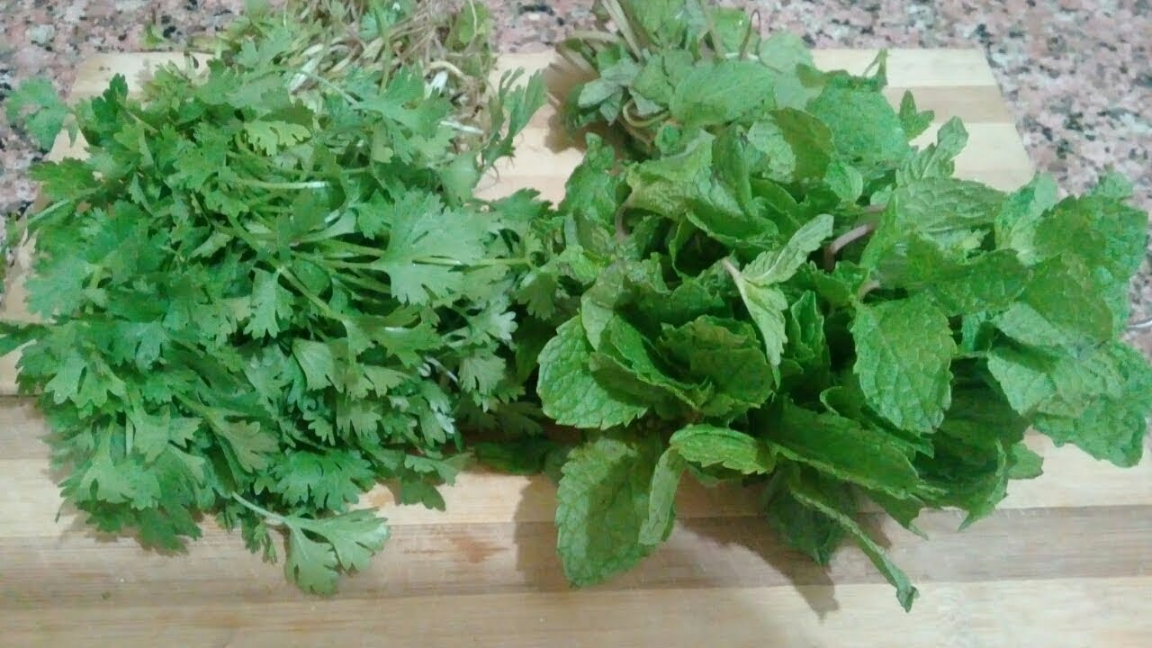 how to store coriander and mint leaves for long time kitchen tips youtube. Black Bedroom Furniture Sets. Home Design Ideas