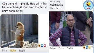 BLdaoTV- Những bình luận bá đạo hài hước - phần 69