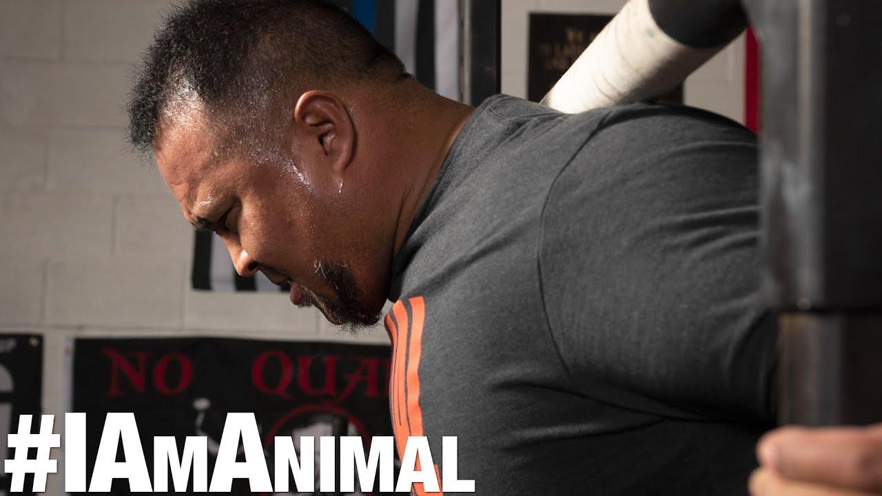 I Am Animal | Grant Higa