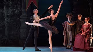 My First Ballet: Swan Lake – Odile and Prince Siegfried extract | English National Ballet