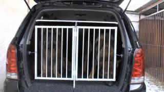 Автобокс для собак.