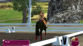 HORSE LIFE 2 (PC)