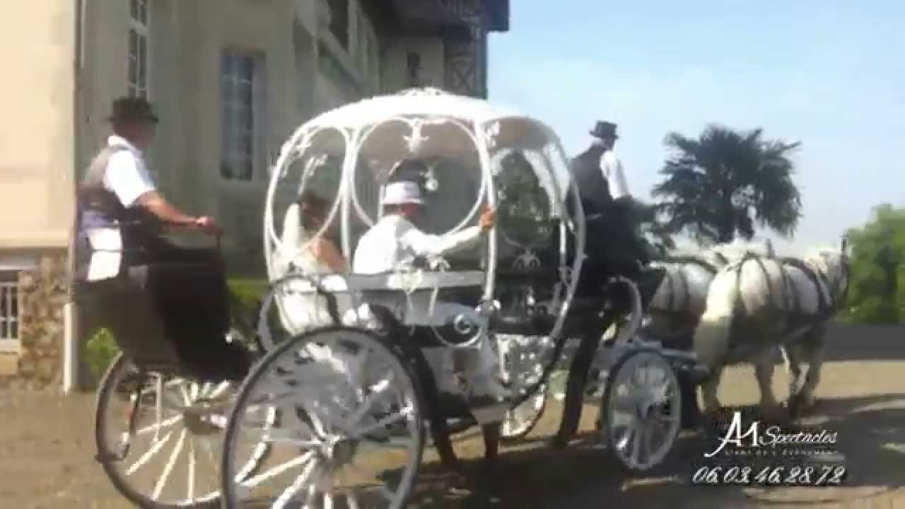 Location de carrosse et de cal che chantilly oise youtube - Cendrillon et son carrosse ...