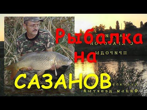 Купить Дешёвые Воблер Рыбалка и схожие товары на AliExpress