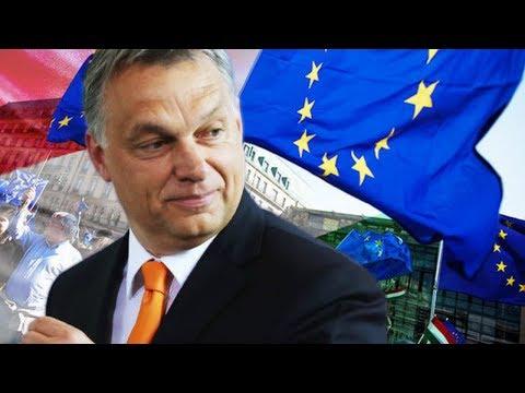 SHOCK STUDY: Anti-EU