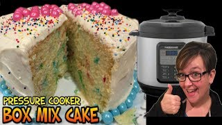 Making Food Monday: Pressure Cooker Box Mix Cake