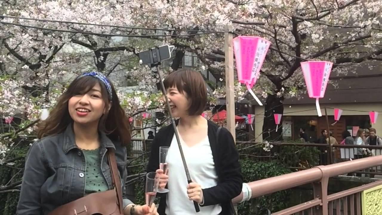 Nake sakura girls, mature pussy yideos