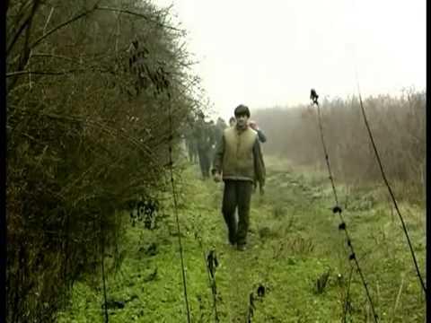 Смотреть охота на кабана в германии видео бесплатно