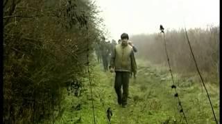 Охота на кабана в Германии.(Немецкие охотники вышли на кабана., 2015-01-23T19:20:24.000Z)