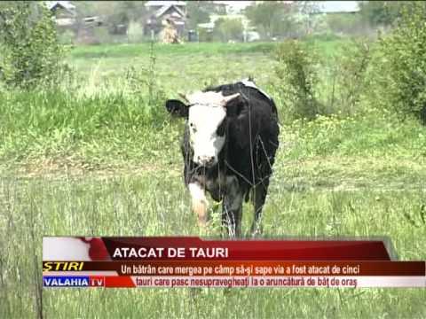 ATACAT DE TAURI