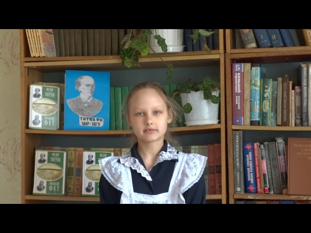 Изображение предпросмотра прочтения – АринаБыкова читает произведение «Тихой ночью, поздним летом...» Ф.И.Тютчева